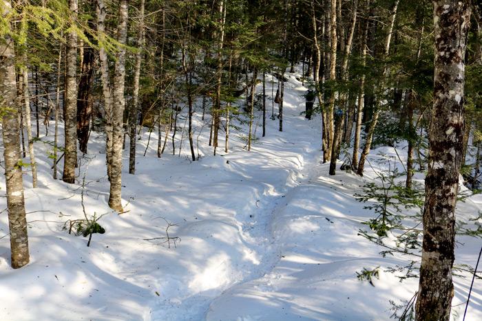 Hiking Warrens Trail In Maine