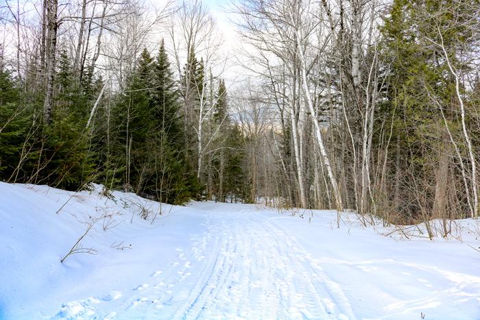 A Snow Covered Poplar Hut Access Hiking Trail