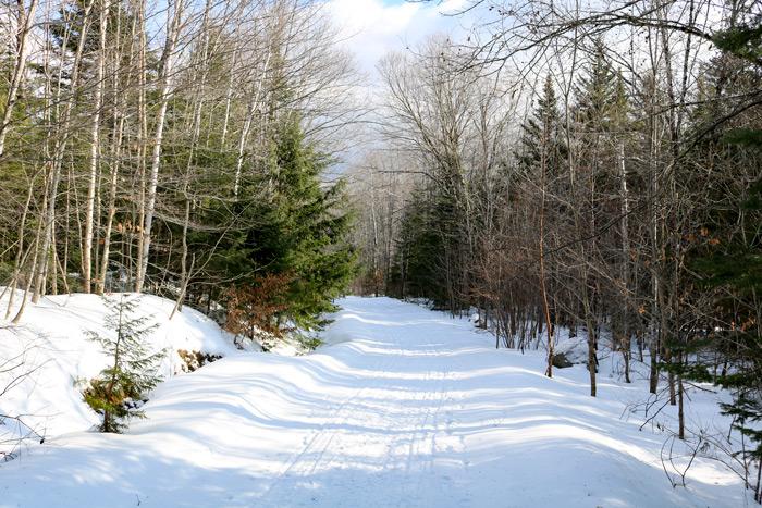 Poplar Hut Access Snow Trail