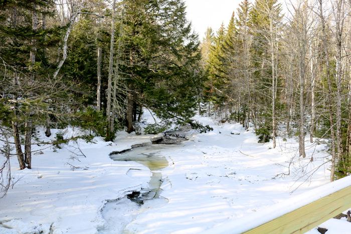 A View From The Poplar Stream Falls Bridge