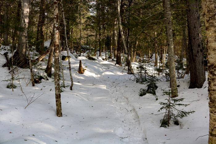 Warrens Trail Maine
