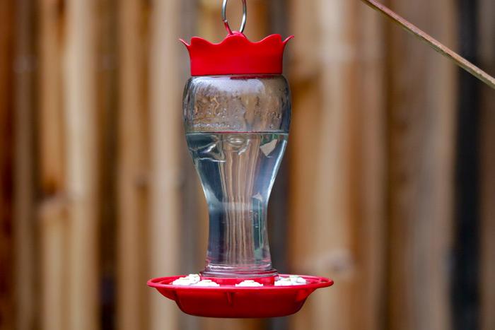 Pennington Glass Hummingbird Feeder Hanging In Front Yard