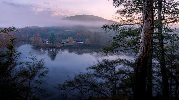 Shore Mist