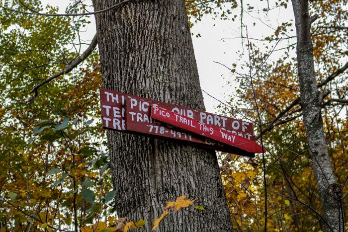 Pico Trail Sign