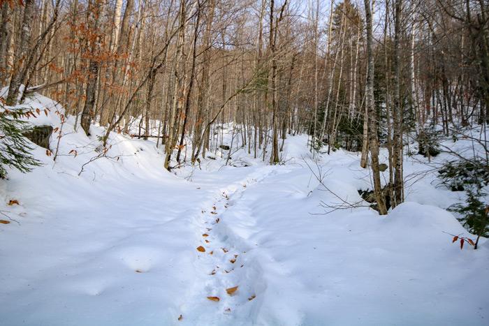 Broken Snow Trail
