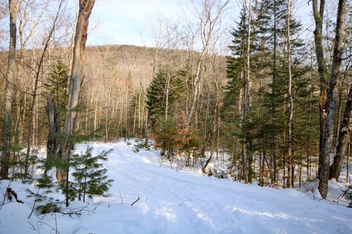 Mountain Snow Trail