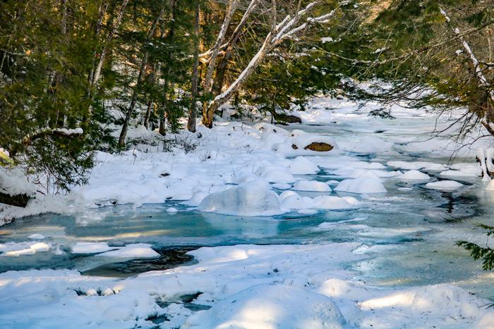 Poplar Stream During The Winter