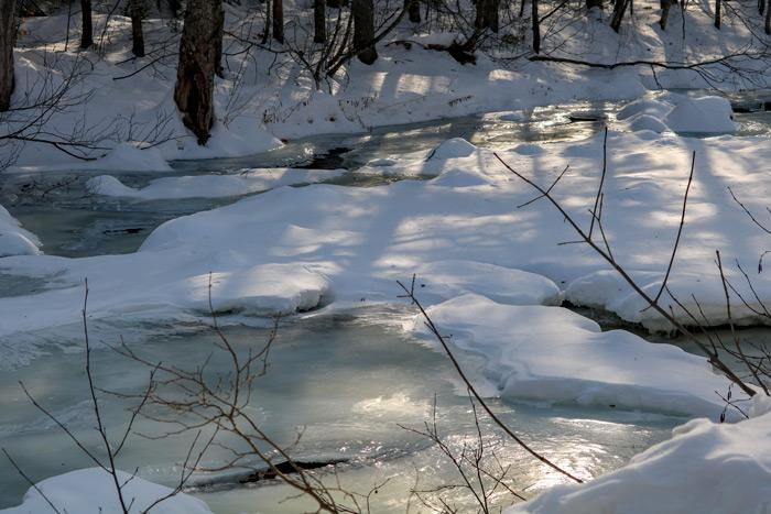 Poplar Stream