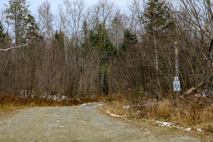 Poplar Trail