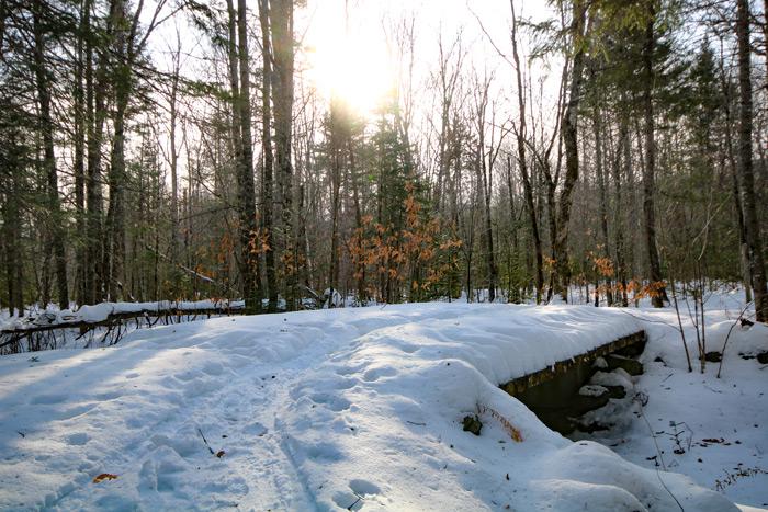 Trail Bridge Covered In Snow