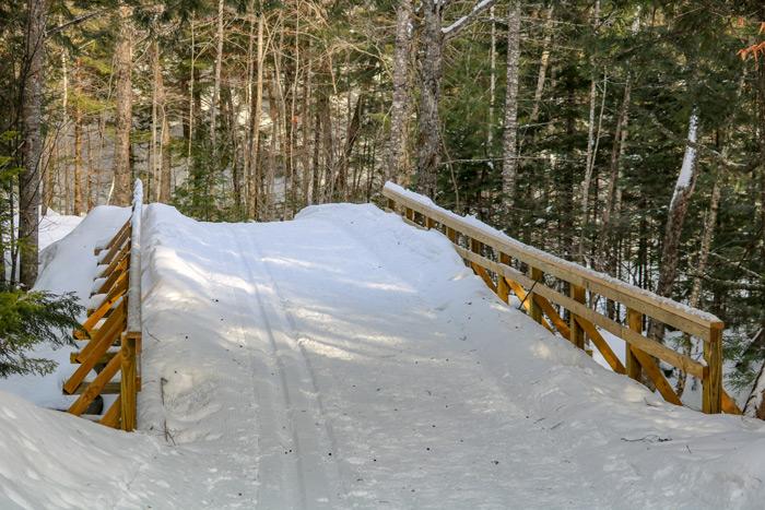 Bridge Over Poplar Stream