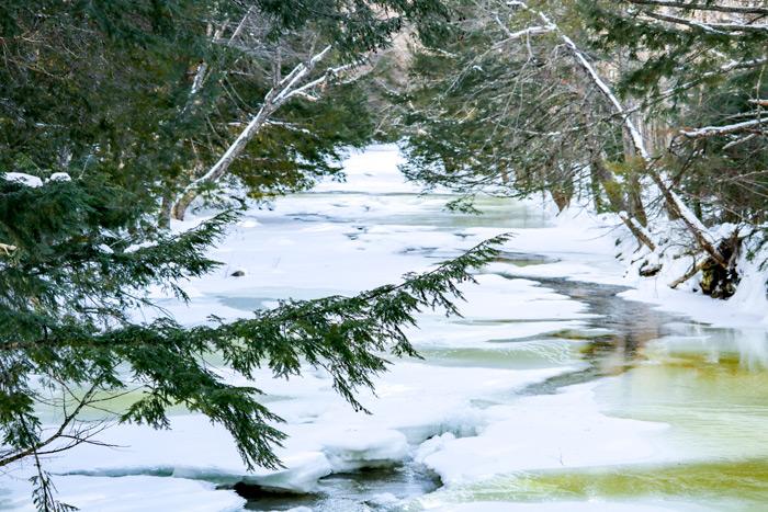 Crossing Poplar Stream