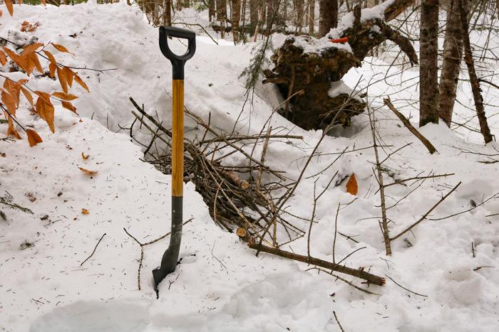 Future Wood Pile