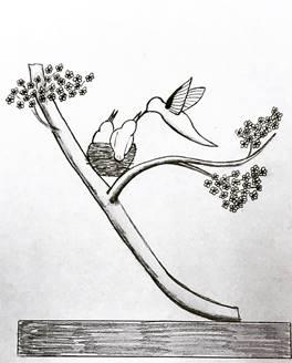 A Working Sketch Of A Bonsai Cherry Blossom Tree