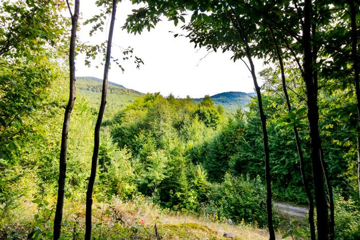 Poplar Mountain Maine