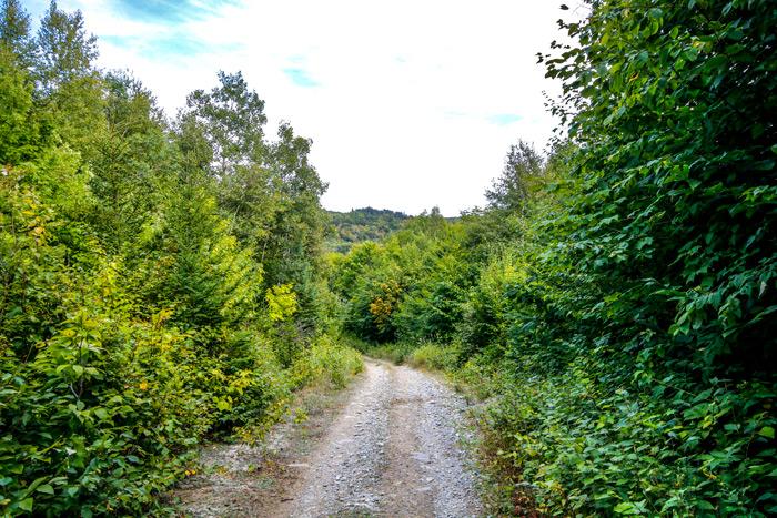 Poplar Mountain Trail