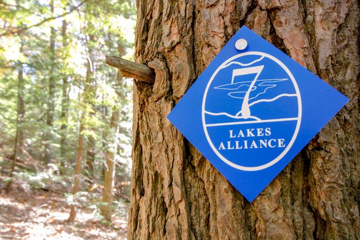 Pine Tree Marker