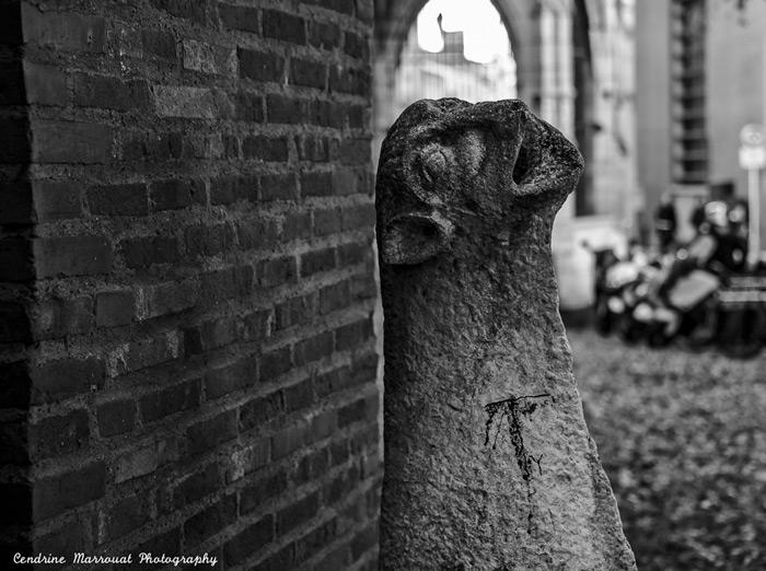 Gargoyle In Toulouse