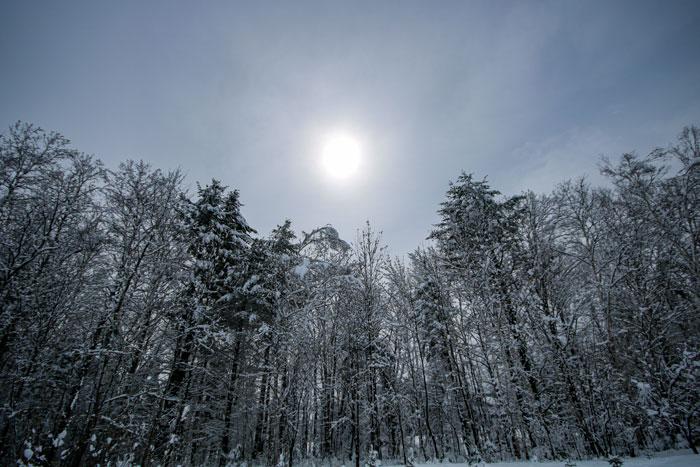 Snowy Sun