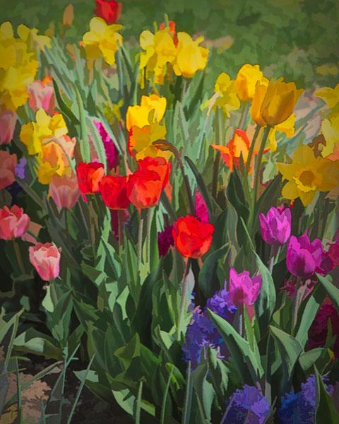 Flowers 5-7