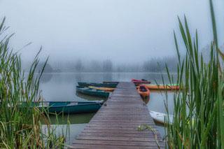 Into The Fog 5-7