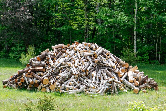 Wood Pile 5-25